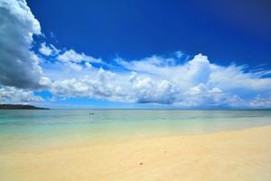 【沖縄】久米島博物館で島の文化・自然を知ろう!島巡りの出発点にもおすすめ