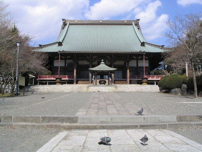【神奈川】藤沢市で都内から日帰りで楽しめる人気の定番観光地5選
