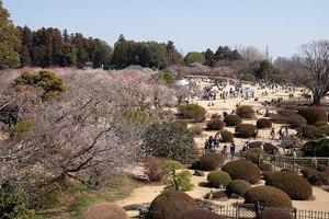 【茨城】水戸周辺のおすすめ観光スポット10選:徳川家ゆかりの地を訪ねて