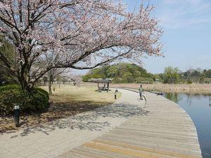 【千葉】松戸周辺のおすすめ観光スポット10選:徳川将軍家ゆかりの宿場町を歩こう!