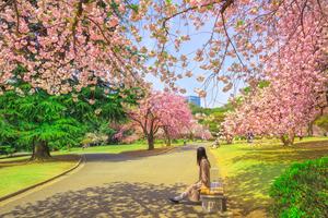 新宿周辺のおすすめ旅館6選:格安でビジネスにも人気の宿をご紹介