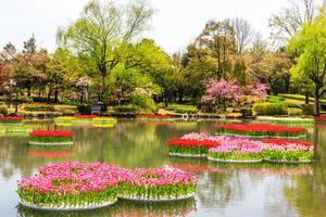 砺波のおすすめ旅館:人気の温泉宿や子連れにおすすめの旅館を紹介