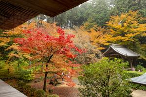 滋賀のおすすめ子連れ旅館20選:口コミ評判の高い宿をご紹介